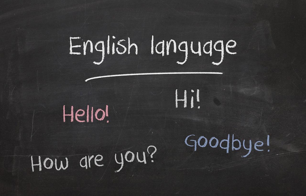 Leer de taal met Duolingo