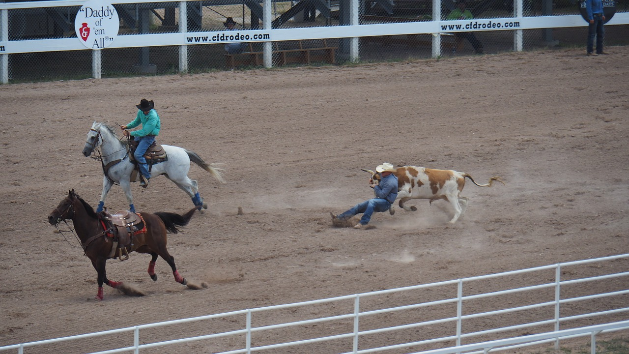 Rodeo in Cheyenne